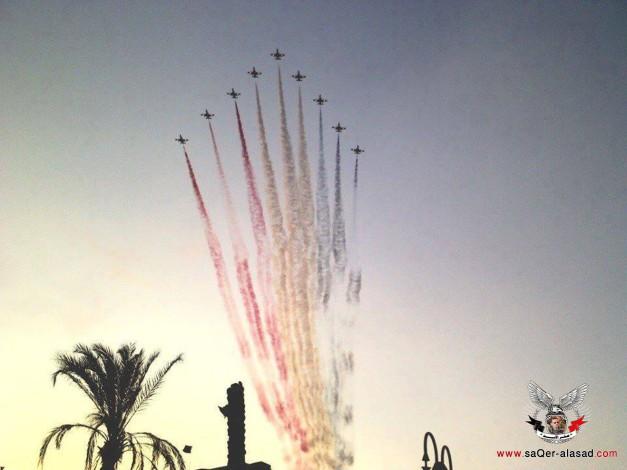 سلاح الجو المصري