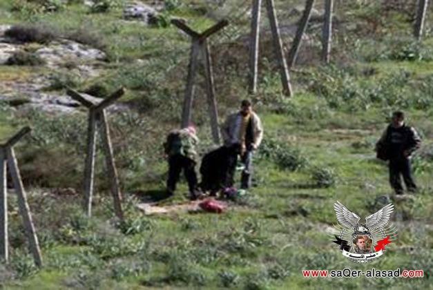 مقتل أردني خلال تسلله لسورية